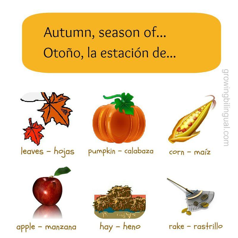 Fall - Otoño vocabulario