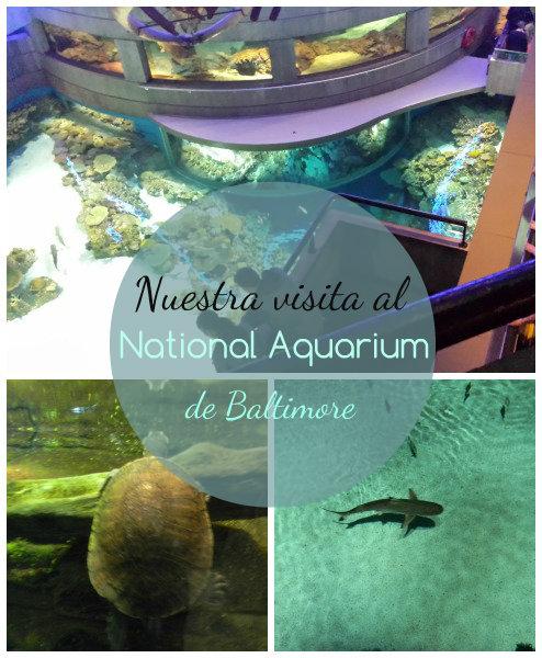 National Aquarium en Baltimore