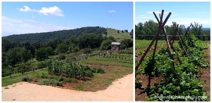 Los jardines en Monticello