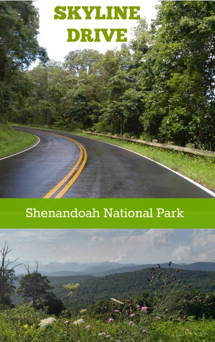 Skyline Drive en Virgina, la carretera en los alto de Blue Ridge Mountains a lo largo de Shenandoah National Park