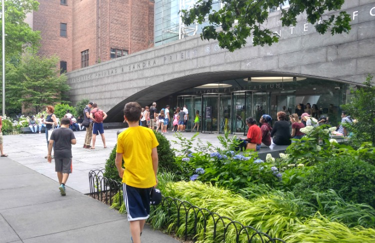 Entrando al Amrican Museum o Natural History en New York