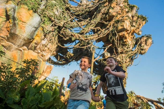 Pandora en Disney World