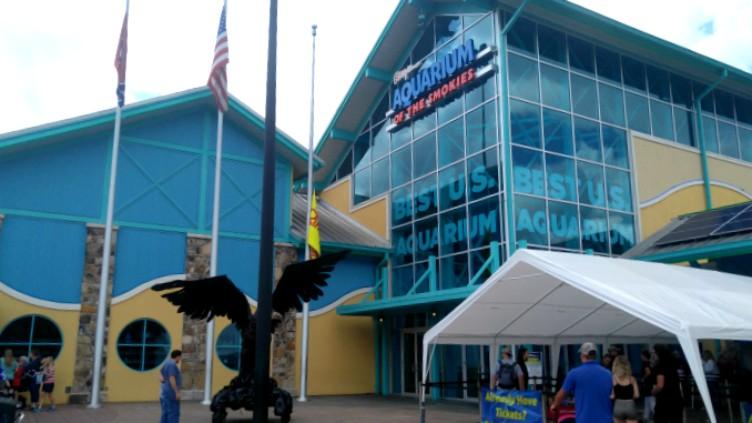 Ripley's aquarium en Gatlinburg Tennessee