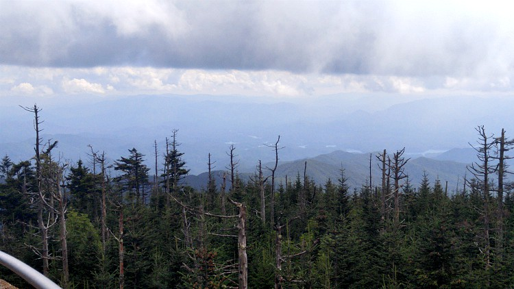 La vista desde lo alto de Clingsman Dome en Smoky Mountains