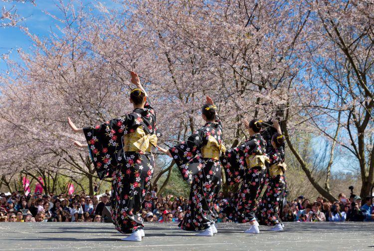 Una serie de eventos en el Subaru Cherry Blossom Philadelphia