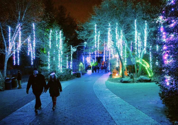 Los arreglos de luces en el zoologico de Philadelphia Luminature